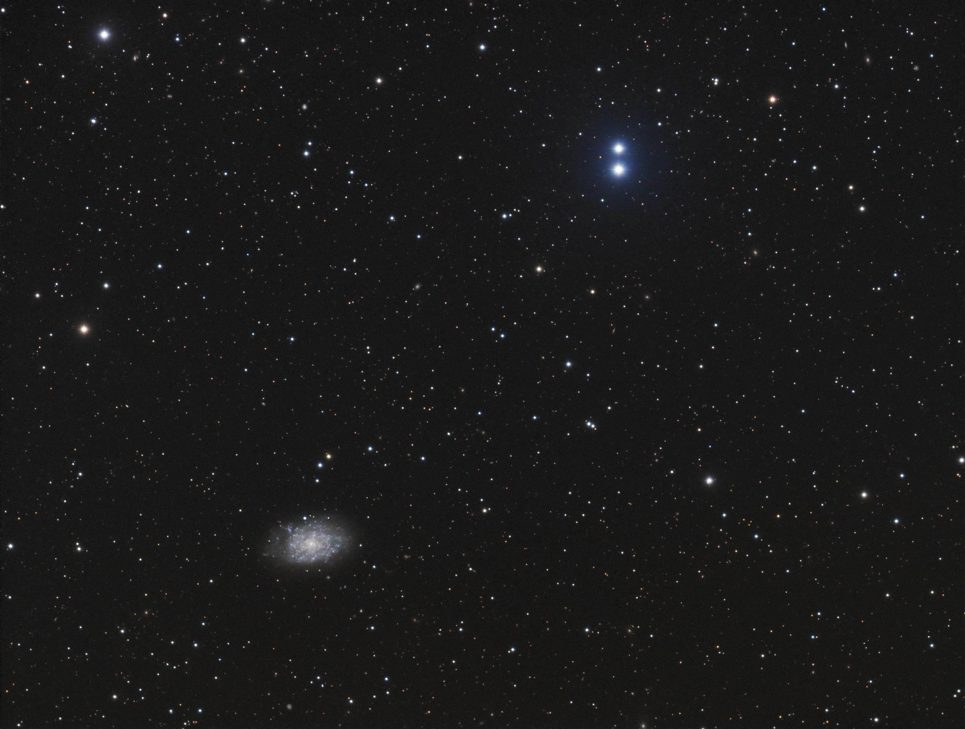 NGC%207793%20-%20LRGB.jpg